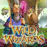 Wild Wizards